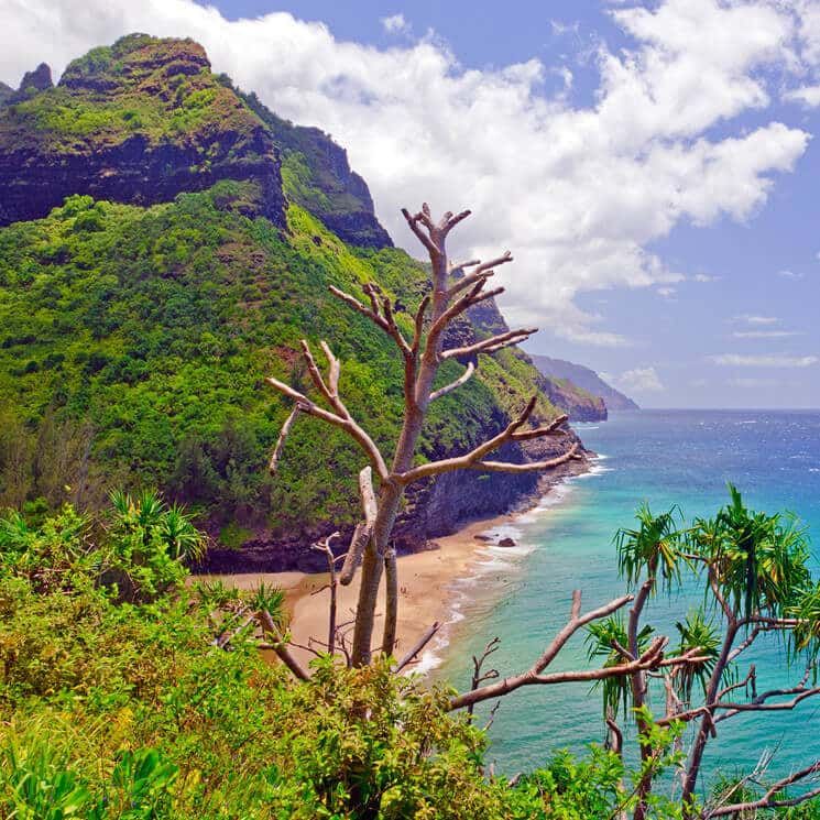 Tropical mountainside covered with greenery next to beach and turquoise water