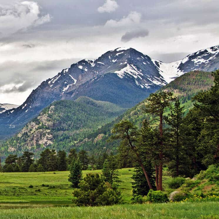 Soaring snow-capped mountains fronted by green meadows and trees.